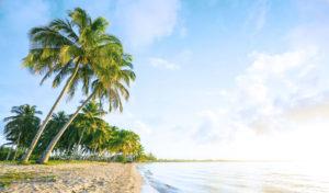 Cuba, Playa Larga beach
